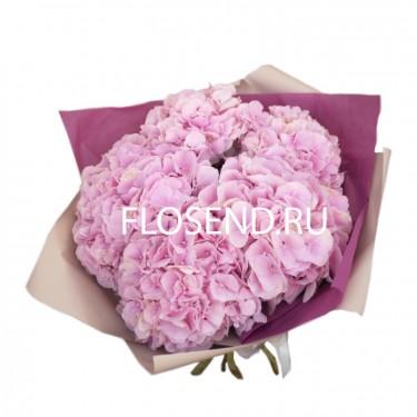 Букет 5 розовых гортензий